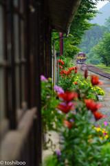四季結び、初夏の駅
