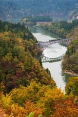 秋にかける橋
