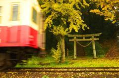 電車通りまーす。