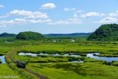 湿原を往く