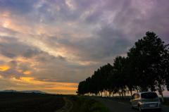 夕陽へ続く道