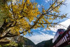 秋晴れの空の下
