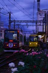日常・終着駅