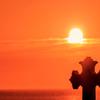 夕日とクルス