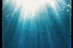 海の中から