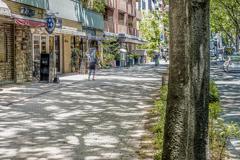 街の木漏れ日