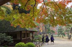 小石川後楽園の紅葉(1)