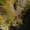 中津川の紅葉