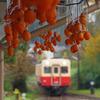 吊るし柿のある駅舎