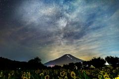 ひまわりと富士 見えなかった天の川