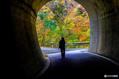 長い長い真っ暗なトンネルを抜けると