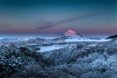 大観山晩秋奇跡の朝