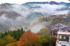 紅葉+朝靄