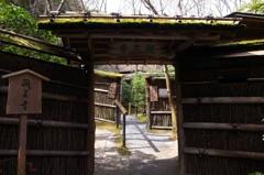 早春の祇王寺山門