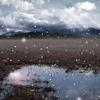 冬枯れ野 の光芒
