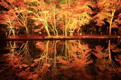 曽木公園 2012