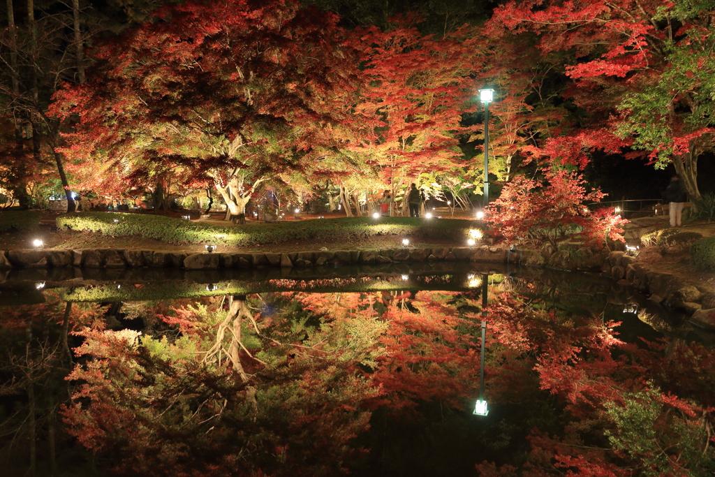 曽木公園2017 2