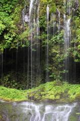 変わらぬ滝