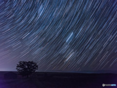 星降る丘で・・・