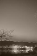夜桜と星空と