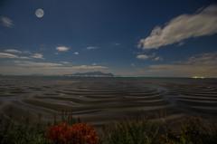 月夜のシマシマ干潟風景2