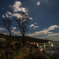 月夜のシマシマ干潟風景