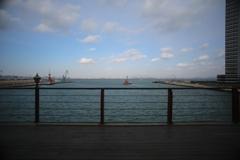 大連の港(^。^)