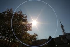太陽・・・2