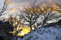 雪化粧の夜明け