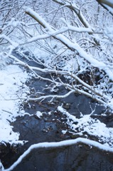 仙石原 清流 雪化粧