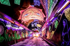 きらら夢トンネル Ⅱ