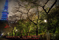 ninjinの東京散歩 東京タワー3
