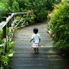 松江百景 英国庭園 花の回廊