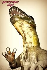 ninjinの伯耆の国散歩 恐竜王国 2