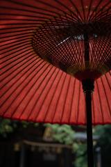 破れた傘に…