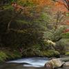 江竜田の滝遊歩道 2014-11(2)