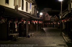 Goldfish lantern festival☆