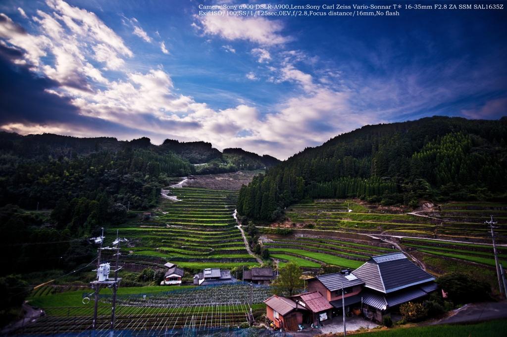 Stone wall rice field☆