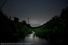 Firefly's river☆
