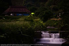 Scenery with firefly☆