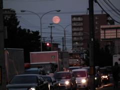 突如出現した大きなピンクの満月!!