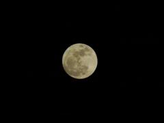 スーパームーンな満月