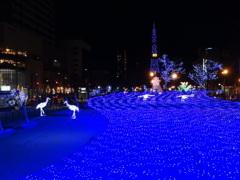 2011 札幌ホワイトイルミネーション