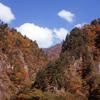 白山スーパー林道 H25.11.02 04
