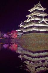 烏城「夜桜会」  IMGP4635zz