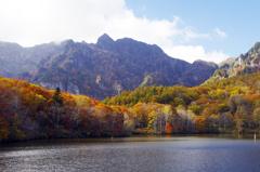 秋 真っ盛り _IGP7468zz