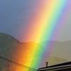 レインボー 虹