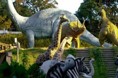 不思議な動物園 _IMG4471zz