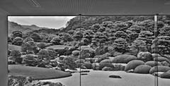 水墨の庭 _IGP4917zz