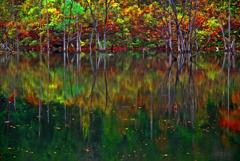 自然湖秋景 IMGP6385zz